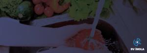 Higienizar os alimentos evita doenças